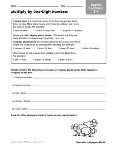 ELL: Regular and Irregular Plurals Worksheet