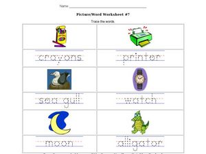 Picture/Word Worksheet 7 Worksheet
