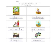 Career/Jobs: Picture/Word Worksheet Worksheet