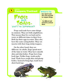 Compare and Contrast: Frogs and Toads Graphic Organizer