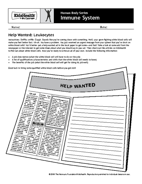 Human Body Series Immune System Worksheet For 4th 6th