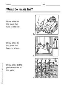 Where Do Plants Live? Worksheet