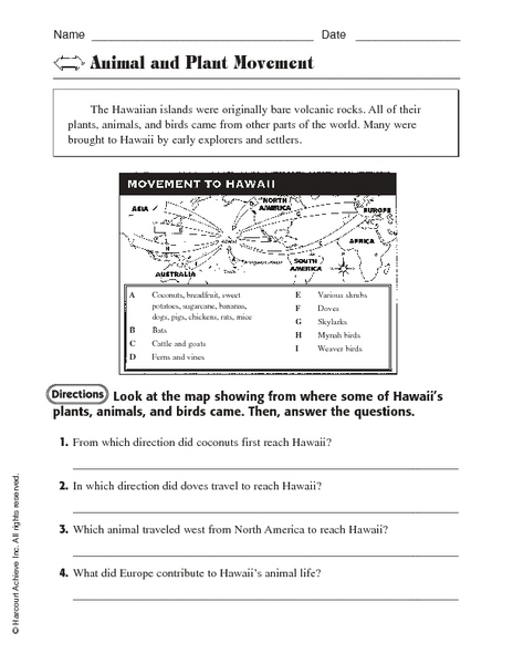 animal and plant movement worksheet for 3rd 5th grade lesson planet. Black Bedroom Furniture Sets. Home Design Ideas
