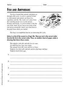 Fish and Amphibians Worksheet