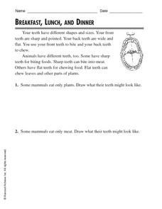 Breakfast, Lunch and Dinner Worksheet