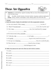 These are Opposites Worksheet