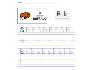 B Is For Buffalo Worksheet