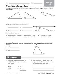 Triangles and Angle Sums: Practice Worksheet