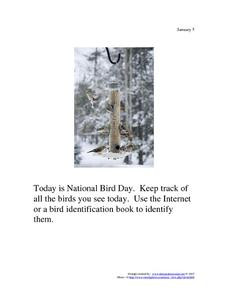 National Bird Day: January 5 Worksheet