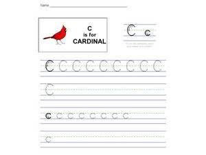 C is for Cardinal: The Letter C Worksheet