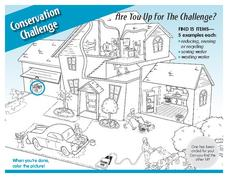 Conservation Challenge Worksheet