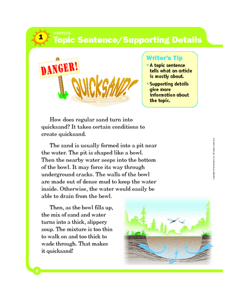 Topic Sentence Supporting Details Graphic Organizer For