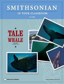 A Tale of a Whale:  And Why It Can Be Told Lesson Plan