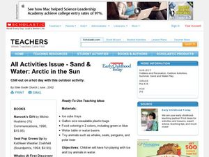 Sand & Water: Arctic in the Sun Lesson Plan