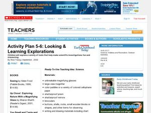 Looking & Learning Explorations Lesson Plan