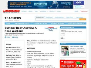 Summer Body Activity: A Nose Workout Lesson Plan