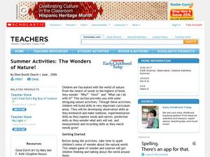 Summer Activities: The Wonders of Nature! Lesson Plan