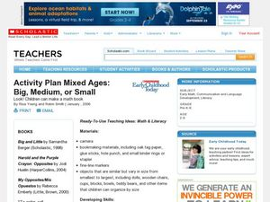 Activity Plan Mixed Ages: Big, Medium, or Small Lesson Plan