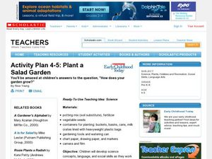 Activity Plan 4-5: Plant a Salad Garden Lesson Plan