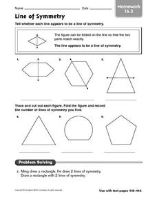 Lines of Symmetry: Homework Worksheet
