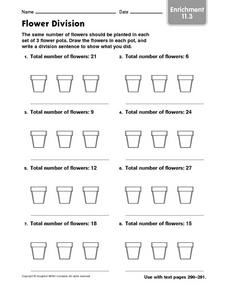 Flower Division Enrichment 11.3 Worksheet