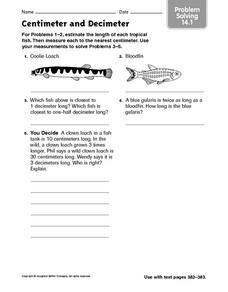 Centimeter and Decimeter  problem solving 14.1 Worksheet
