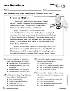 Ask Questions: Fast in Flight Worksheet