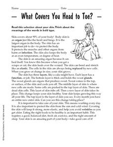 What Covers You Head to Toe? Worksheet