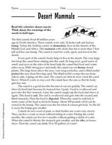 Desert Mammals Worksheet