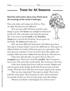 Trees for all Seasons Worksheet