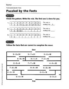 Puzzled by the Facts Worksheet