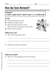 How Are Seeds Different? Worksheet
