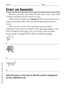 Extinct and Endangered Worksheet