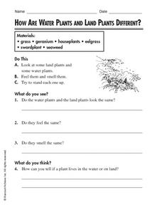 How Are Water Plants and Land Plants Different? Worksheet
