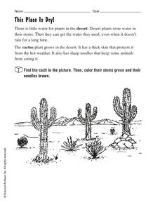 This Place Is Dry! Worksheet