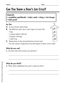 Can You Show A Frog's Life Cycle? Worksheet