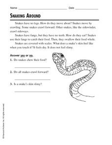 Snaking Around Worksheet