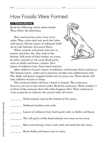how fossils were formed worksheet for 3rd 5th grade lesson planet. Black Bedroom Furniture Sets. Home Design Ideas