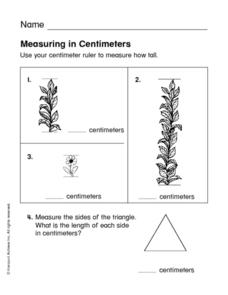 Measuring in Centimeters Worksheet