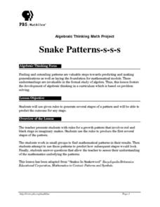 Snake Patterns-s-s-s Lesson Plan