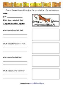 What Does the Animal Look Like? Worksheet