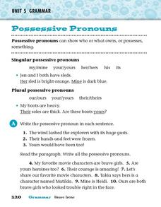 Grammar: Possessive Pronouns Worksheet