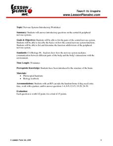 Nervous System Introductory Worksheet Worksheet