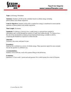 Cell Energy Study Guide Worksheet