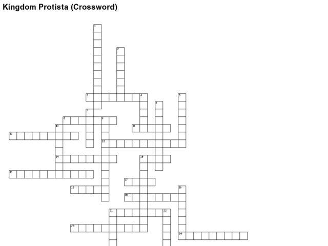 Kingdom Protista Crossword Worksheet for 7th Grade