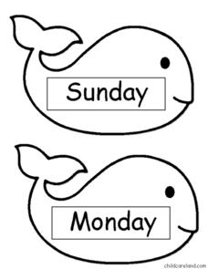Whale: Days and Months Worksheet