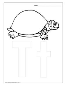 Letter Tt is for Turtle Worksheet