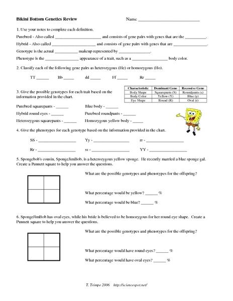 Bikini Bottom Genetics Review Worksheet for 9th - 12th Grade