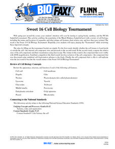 Sweet 16 Cell Biology Tournament Worksheet