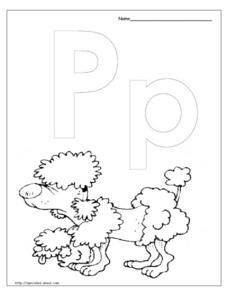 P is for Poodle Lesson Plan
